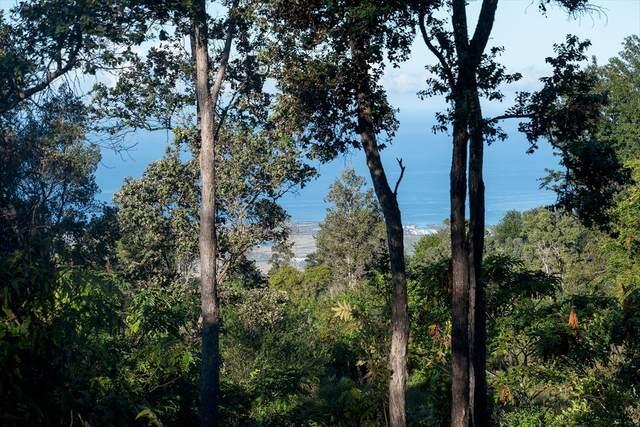 75-1290 Keopu Mauka Dr, Holualoa, HI 96725 (MLS #637705) :: LUVA Real Estate
