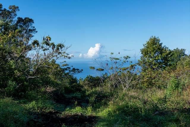 75-1256 Keopu Mauka Dr, Holualoa, HI 96725 (MLS #637758) :: LUVA Real Estate