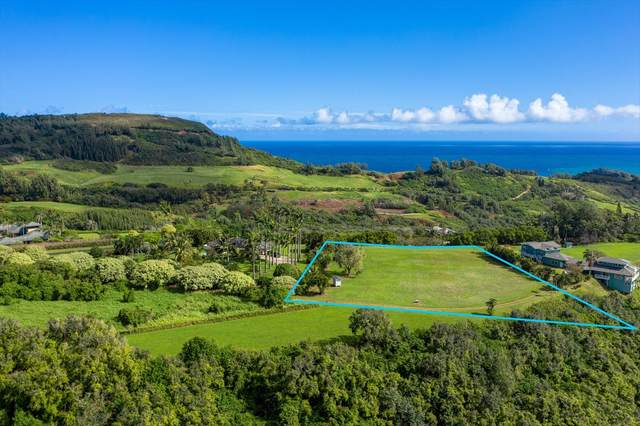 4030 Pali Moana Pl, Kilauea, HI 96754 (MLS #637762) :: Elite Pacific Properties