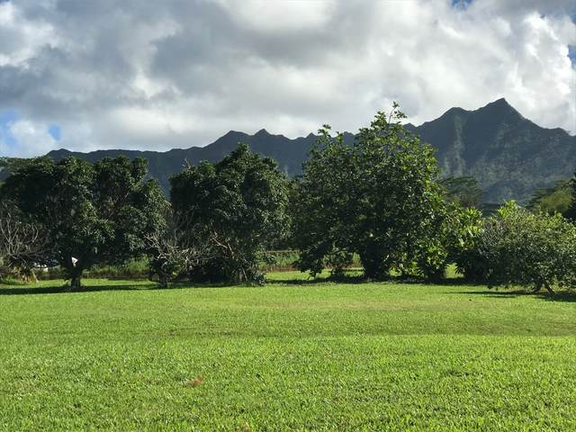 Address Not Published, Kilauea, HI 96722 (MLS #637856) :: Team Lally
