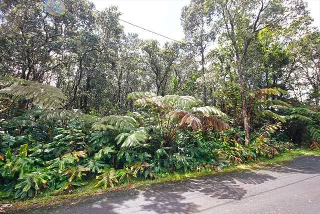 11-3899 Second St, Volcano, HI 96785 (MLS #637982) :: Corcoran Pacific Properties