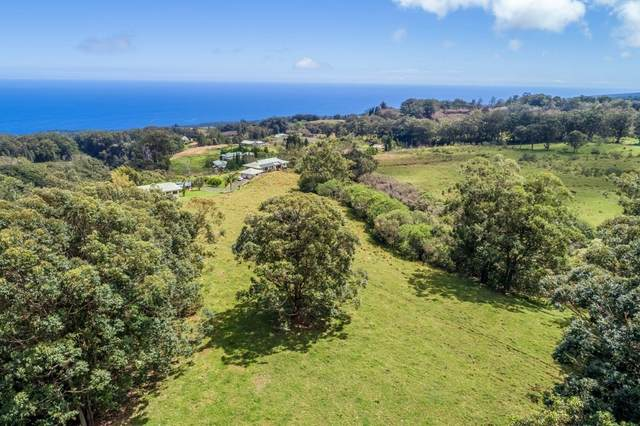 Hoo Kahua Rd, Honoka'a, HI 96727 (MLS #638110) :: Song Team | LUVA Real Estate