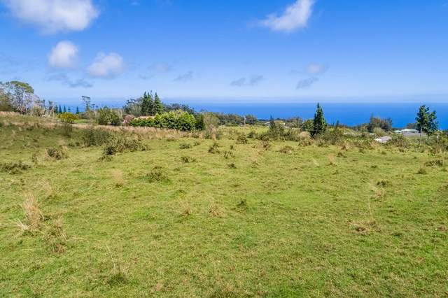 Hoo Kahua Rd, Honoka'a, HI 96727 (MLS #638111) :: Song Team | LUVA Real Estate