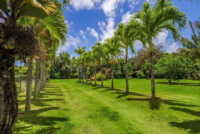 5591 Kaapuni Rd, Kapaa, HI 96746 (MLS #638137) :: Elite Pacific Properties