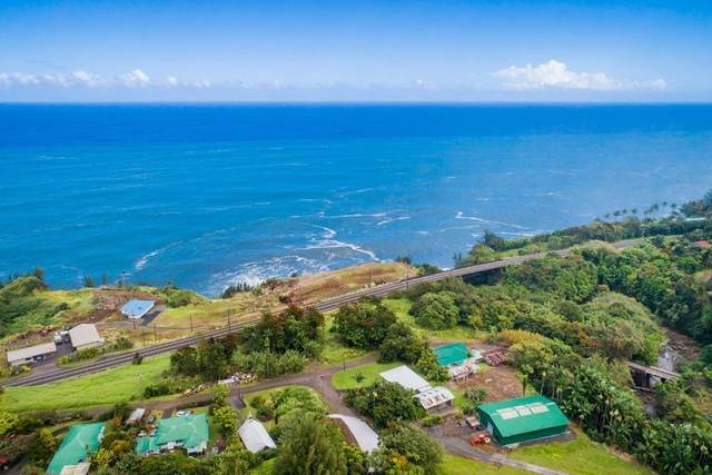 Old Mamalahoa Hwy, Ninole, HI 96773 (MLS #638220) :: LUVA Real Estate