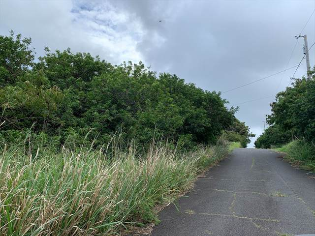 Pua Street, Naalehu, HI 96772 (MLS #638307) :: Iokua Real Estate, Inc.