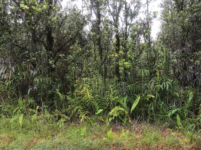 Address Not Published, Mountain View, HI 96771 (MLS #638313) :: Elite Pacific Properties