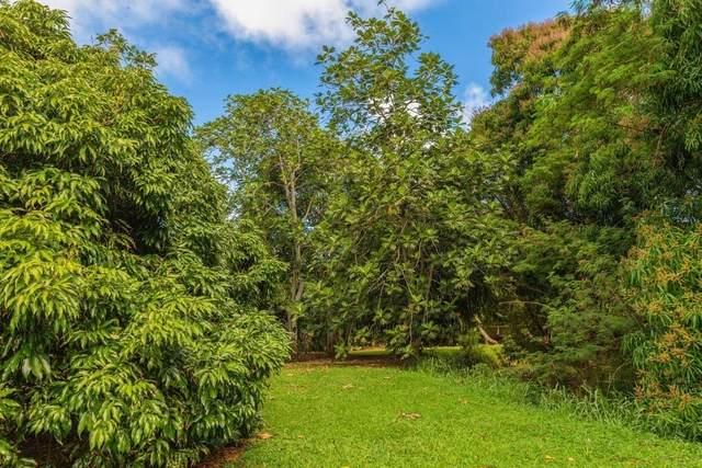 3610 Moloaa Rd, Anahola, HI 96703 (MLS #638512) :: Aloha Kona Realty, Inc.