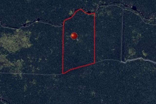 Address Not Published, Hilo, HI 96720 (MLS #638539) :: Song Team | LUVA Real Estate