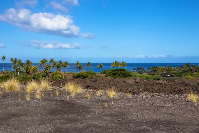 72-201 Lae Kikaua Mauka St, Kailua-Kona, HI 96740 (MLS #638611) :: Steven Moody