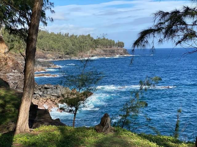 Address Not Published, Honokaa, HI 96727 (MLS #638629) :: Steven Moody
