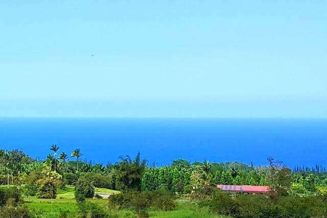 Kaiwiki Homestead, Hakalau, HI 96710 (MLS #638931) :: Elite Pacific Properties