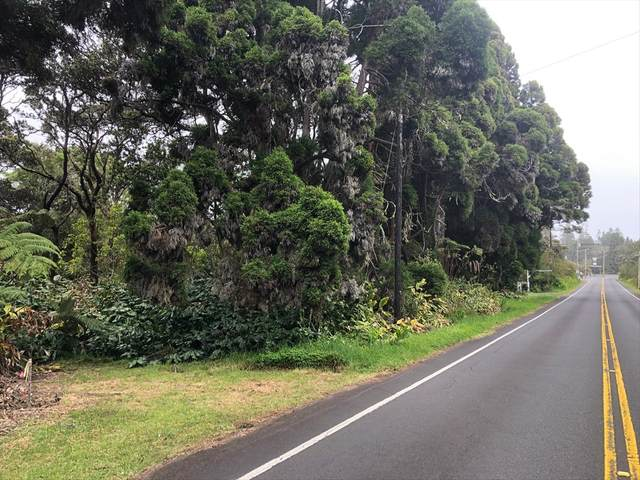 Volcano Rd, Volcano, HI 96785 (MLS #639053) :: Team Lally