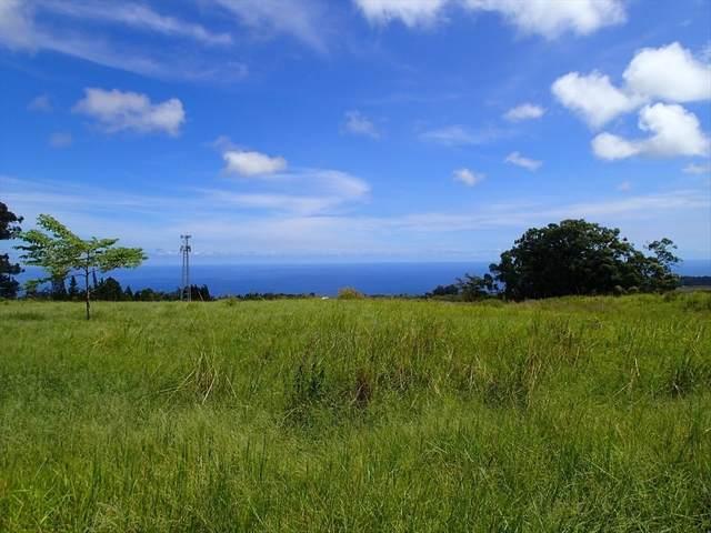 32-491 Piha Kahuku Rd, Papaaloa, HI 96780 (MLS #639092) :: LUVA Real Estate