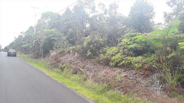 Nahelenani St, Volcano, HI 96785 (MLS #639123) :: Song Team | LUVA Real Estate