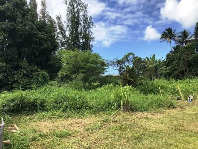 87-F E Lanikaula St, Hilo, HI 96720 (MLS #639138) :: Hawai'i Life