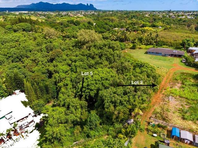 4900 Yamanoha Rd, Kapaa, HI 96746 (MLS #639241) :: Kauai Exclusive Realty