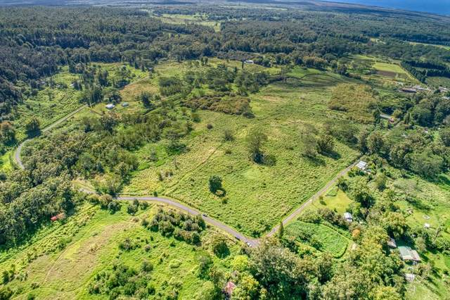 96-1048 Center Rd, Pahala, HI 96777 (MLS #639260) :: Steven Moody