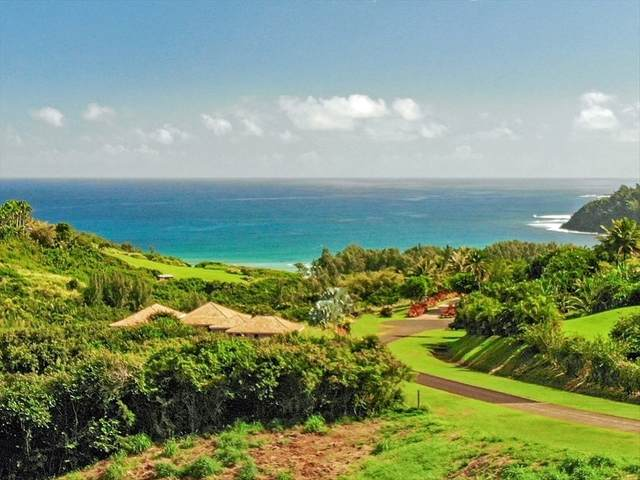 4033 Pali Moana Pl, Kilauea, HI 96754 (MLS #639282) :: Elite Pacific Properties