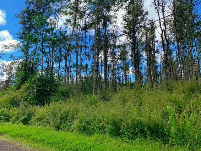 Molokai Rd, Pahoa, HI 96778 (MLS #639342) :: Elite Pacific Properties