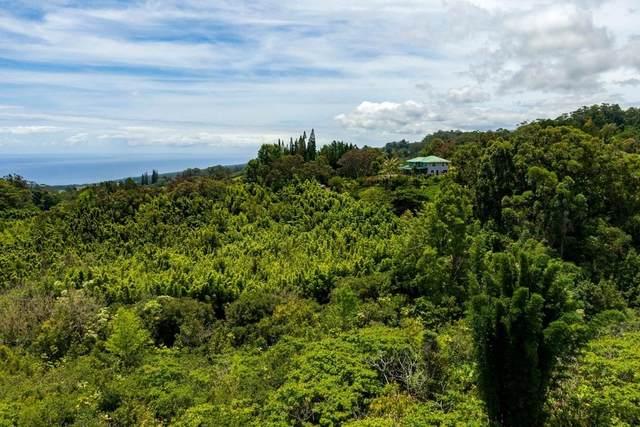 44-3180 Kula Kahiko Rd, Paauilo, HI 96727 (MLS #639413) :: Aloha Kona Realty, Inc.
