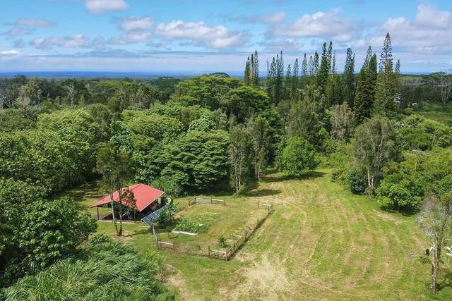 15-2219 Kaniau Pl, Pahoa, HI 96778 (MLS #639423) :: Elite Pacific Properties