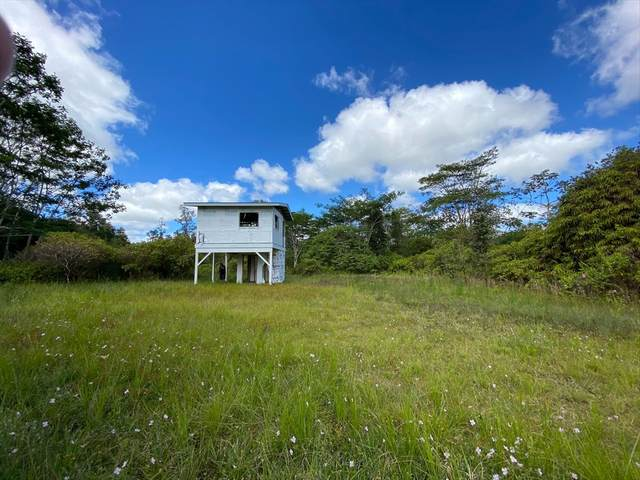16-1424 Opeapea Rd (Road 7), Mountain View, HI 96771 (MLS #639615) :: Elite Pacific Properties