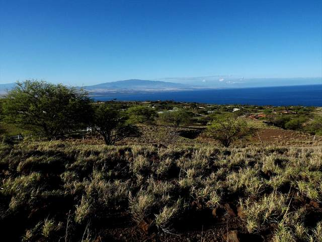 Address Not Published, Kamuela, HI 96743 (MLS #639634) :: Elite Pacific Properties