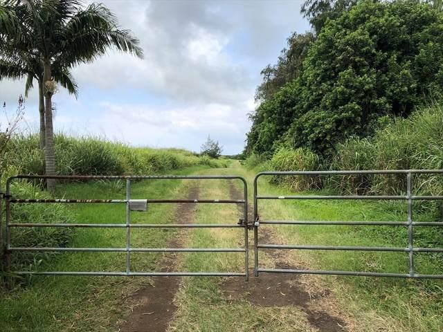 Kamaoa Rd, Naalehu, HI 96772 (MLS #639667) :: Iokua Real Estate, Inc.