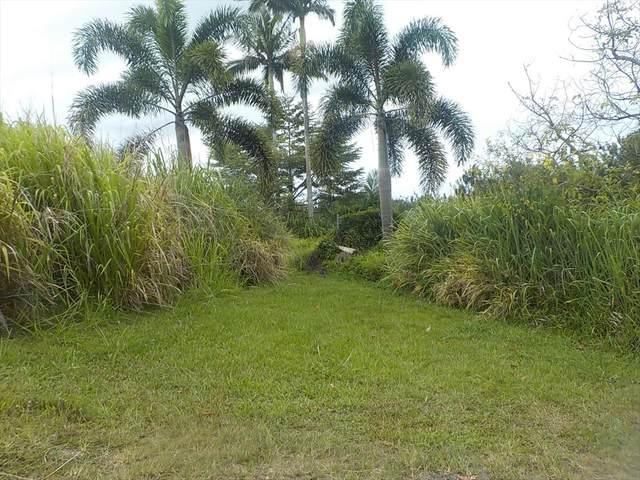 31-98 Kauniho Rd, Ninole, HI 96773 (MLS #639735) :: Corcoran Pacific Properties