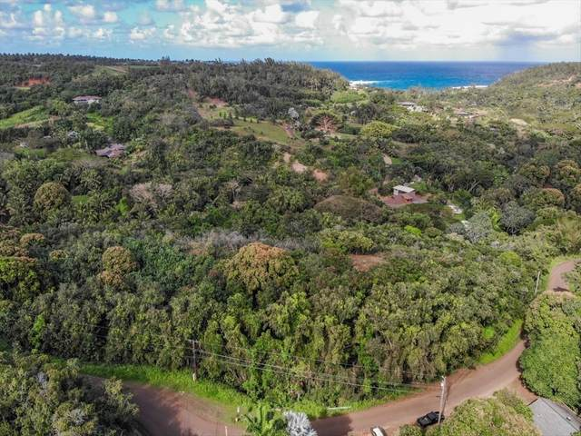 Address Not Published, Anahola, HI 96703 (MLS #639805) :: Kauai Exclusive Realty