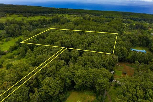 Puaono Rd, Honokaa, HI 96727 (MLS #639847) :: LUVA Real Estate