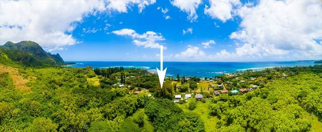 5-7457 Kuhio Hwy, Hanalei, HI 96714 (MLS #639892) :: Elite Pacific Properties
