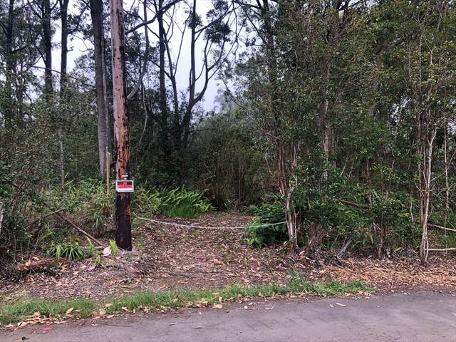 Kahana Dr, Honokaa, HI 96727 (MLS #639898) :: LUVA Real Estate