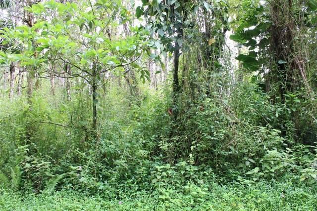 Kauai Rd, Pahoa, HI 96778 (MLS #639900) :: Elite Pacific Properties