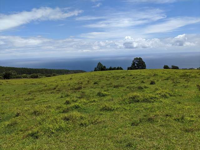 Address Not Published, Laupahoehoe, HI 96764 (MLS #639930) :: Corcoran Pacific Properties