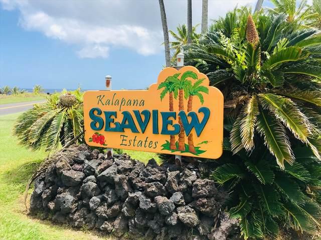 Mapuana Avenue, Pahoa, HI 96778 (MLS #640040) :: Aloha Kona Realty, Inc.