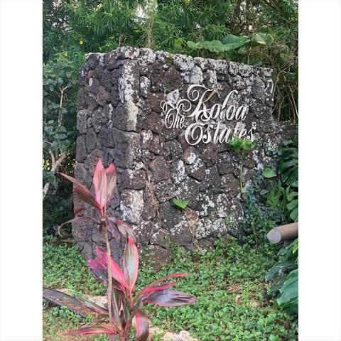 3036 Pua Akala Pl, Koloa, HI 96756 (MLS #640071) :: Corcoran Pacific Properties