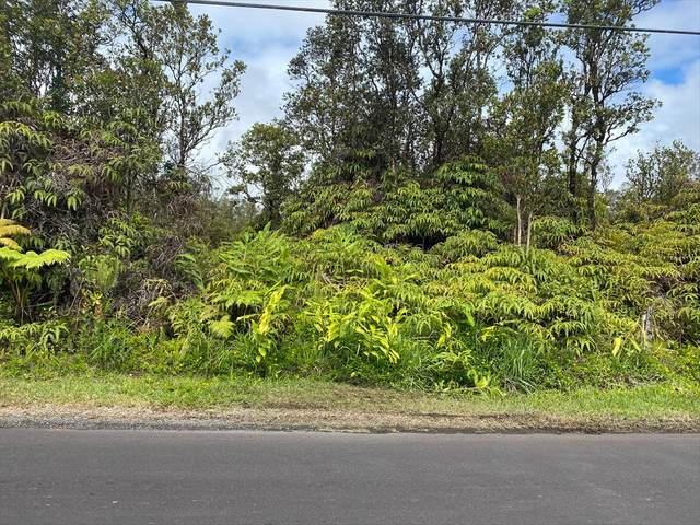 34TH AVE, Keaau, HI 96760 (MLS #640100) :: Elite Pacific Properties