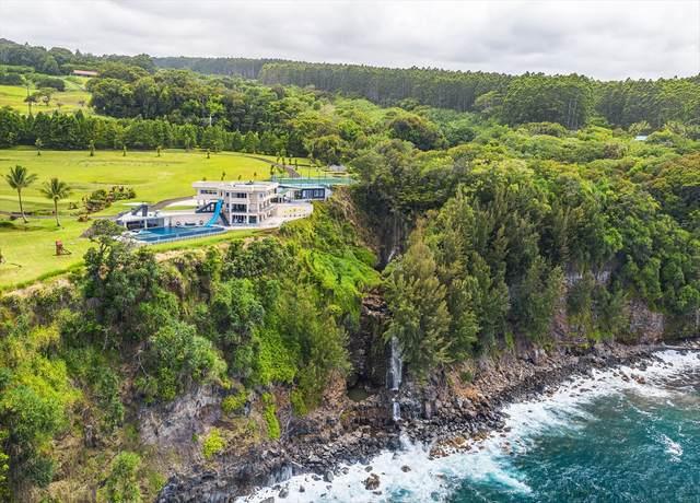 32-1056 Old Mamalahoa Hwy, Ninole, HI 96780 (MLS #640242) :: Elite Pacific Properties