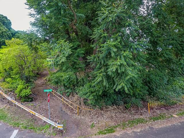 Address Not Published, Pahala, HI 96777 (MLS #640290) :: Iokua Real Estate, Inc.