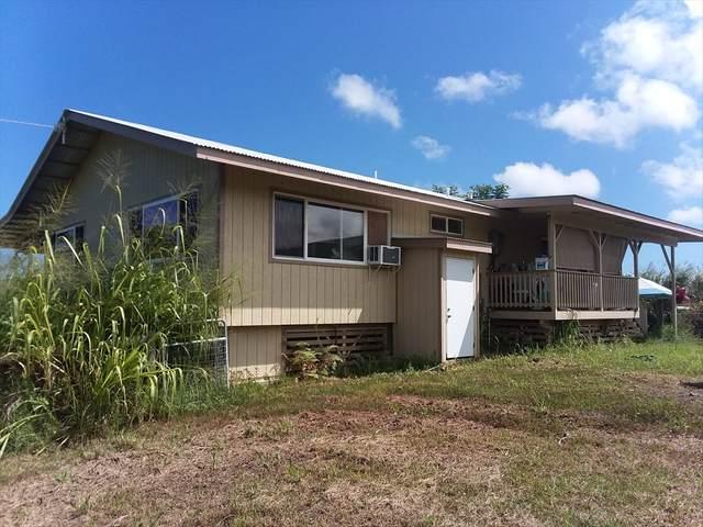 28-250 Ili Opua Rd, Pepeekeo, HI 96783 (MLS #640355) :: Elite Pacific Properties