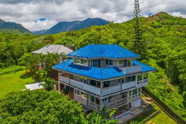 4545 Ananalu Rd, Wainiha, HI 96714 (MLS #640362) :: Corcoran Pacific Properties