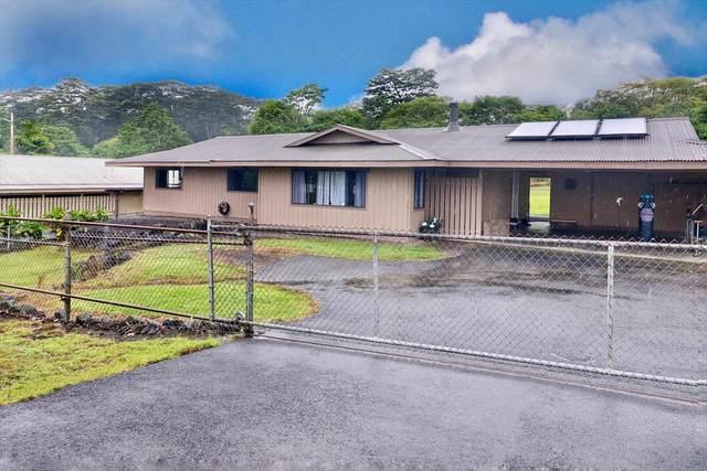 17-212 Volcano Rd, Keaau, HI 96749 (MLS #640406) :: Steven Moody