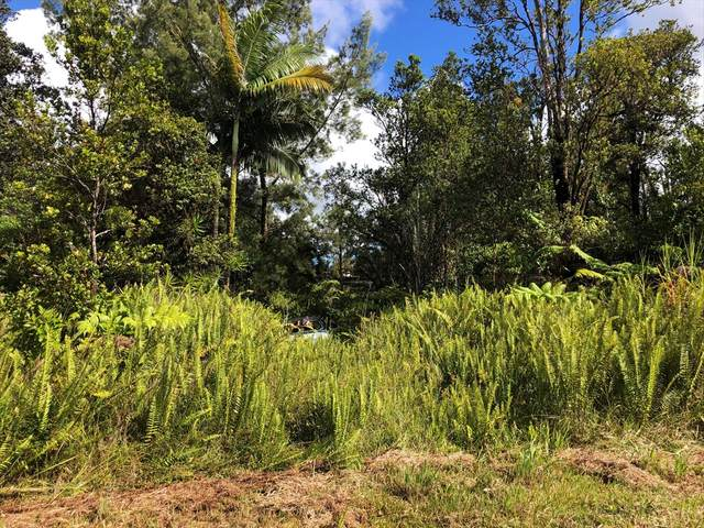 Anthurium St, Mountain View, HI 96771 (MLS #640470) :: Aloha Kona Realty, Inc.