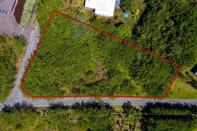 15-914 Lemiwai Rd, Keaau, HI 96749 (MLS #640543) :: Elite Pacific Properties