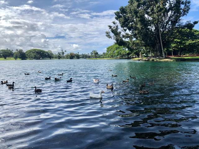 400 Hualani St, Hilo, HI 96720 (MLS #640575) :: Hawai'i Life