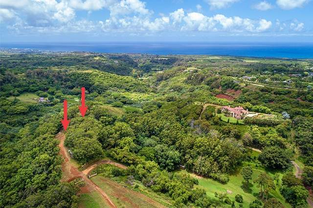 Waha Rd., Kalaheo, HI 96741 (MLS #640577) :: Kauai Exclusive Realty