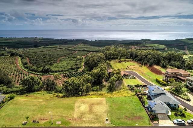 Kaena St, Kalaheo, HI 96741 (MLS #640817) :: Kauai Exclusive Realty