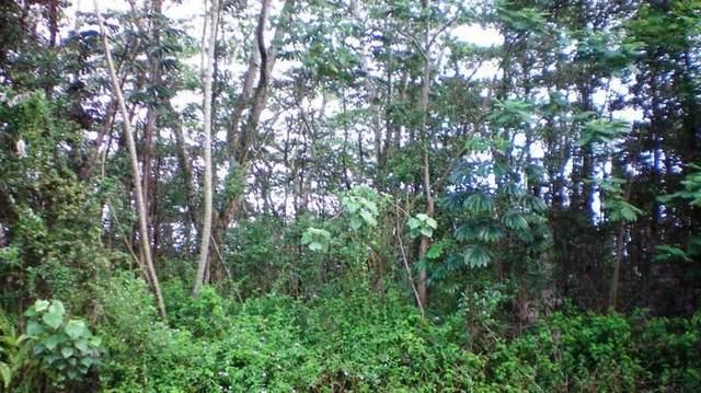 11-3170 Pikake St, Mountain View, HI 96771 (MLS #640882) :: Aloha Kona Realty, Inc.